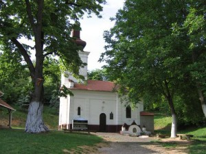Manastir sveta Petka - Berkasovo